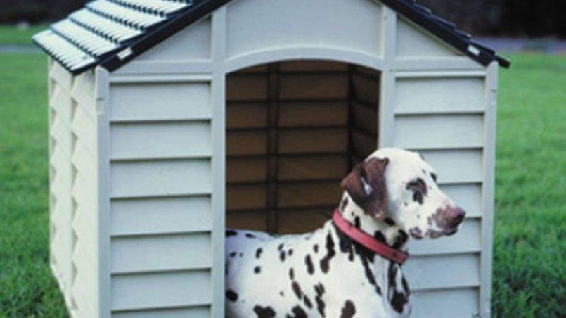 niche pour chien en plastique